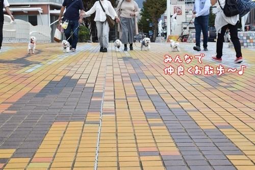 合コン散歩4