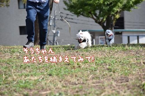 合コン散歩10