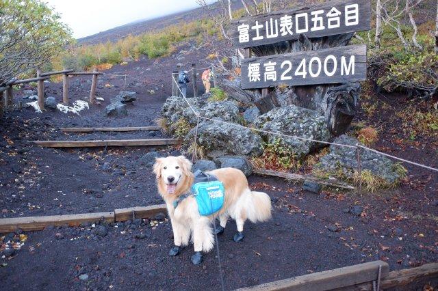 続 御中道への挑戦 2019-10-20 011