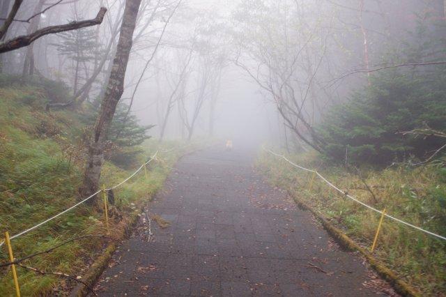 続 御中道への挑戦 2019-10-20 400