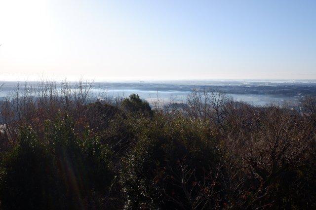 三ッ石森林公園 2020.2.2 002