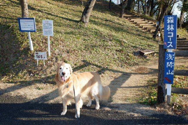 三ッ石森林公園 2020.2.2 003