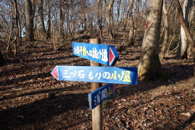 三ッ石森林公園 2020.2.2 027