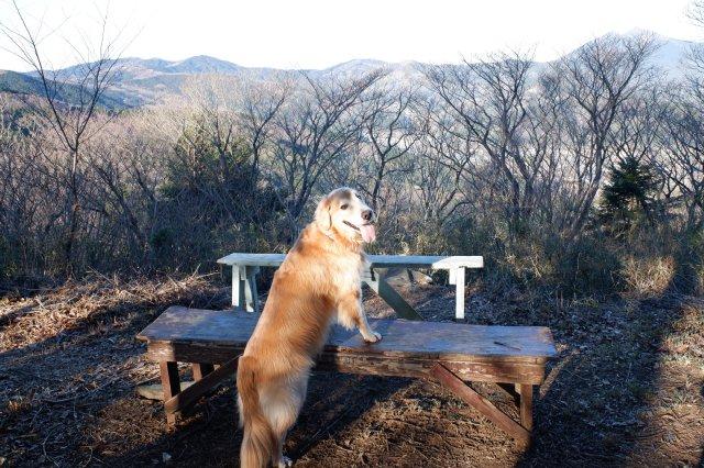 三ッ石森林公園 2020.2.2 051