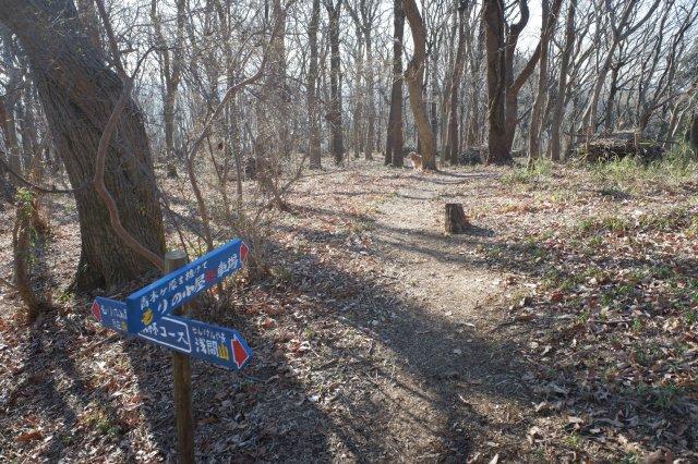 三ッ石森林公園 2020.2.2 086