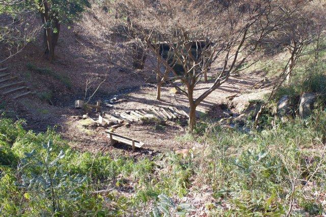 三ッ石森林公園 2020.2.2 108