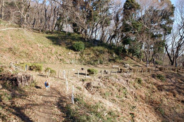 三ツ石森林公園 2020.2.6 006