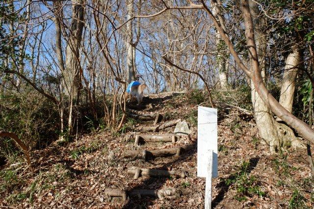 三ツ石森林公園 2020.2.6 020