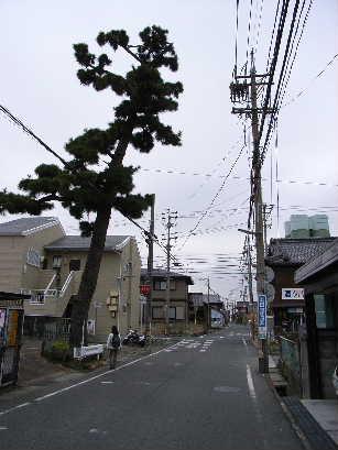 https://blogs.yahoo.co.jp/IMG/ybi/1/43/fd/lunchapi/folder/1448259/img_1448259_44286251_10?-1