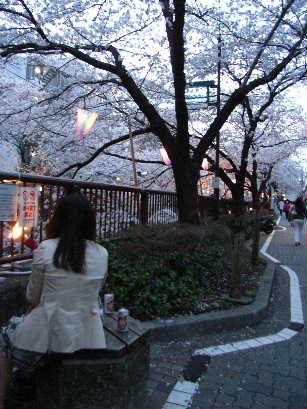 https://blogs.yahoo.co.jp/IMG/ybi/1/43/fd/lunchapi/folder/426496/img_426496_47721445_2?-1