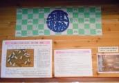 1-DSCN3898.jpg