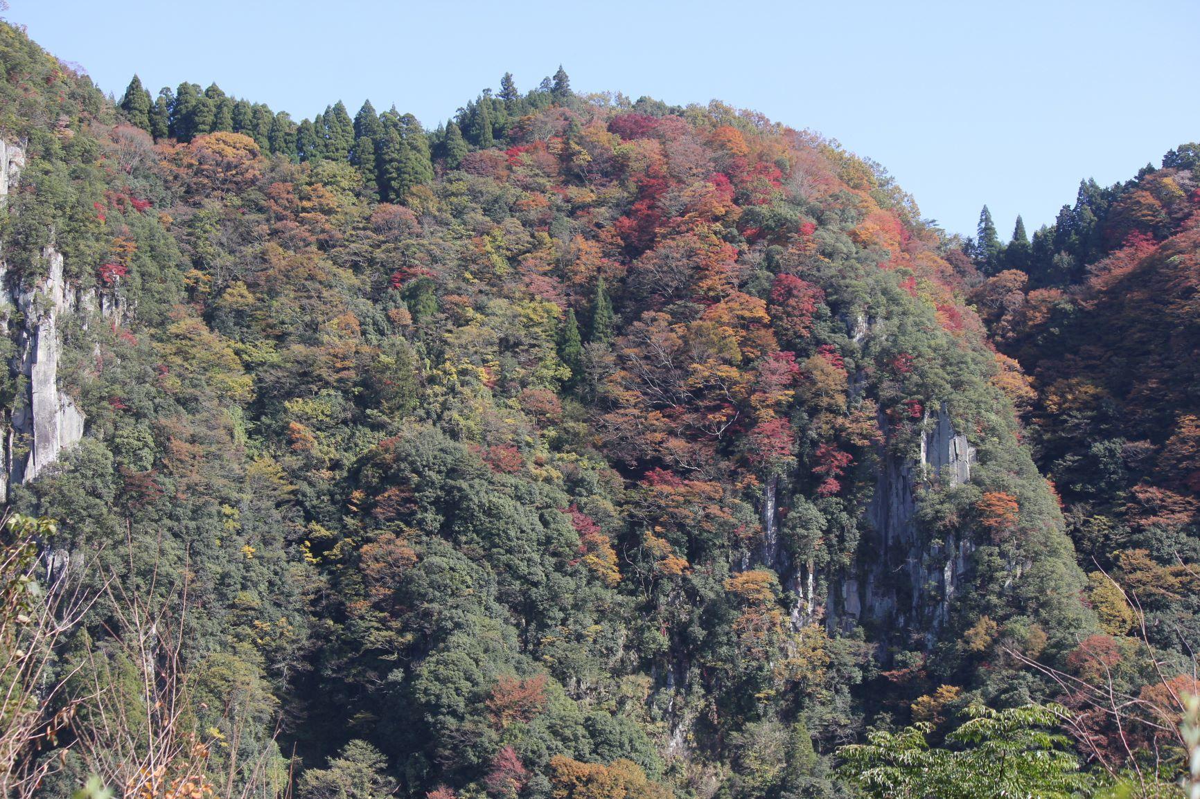 ひびき渓谷の紅葉