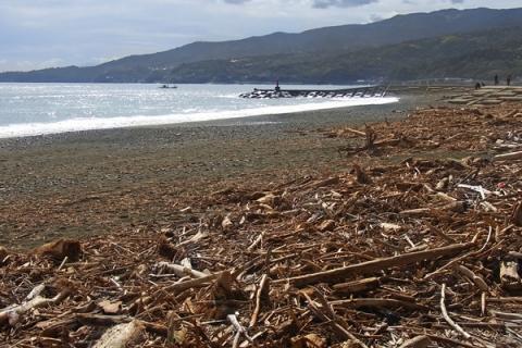 台風2週間後の御幸の浜海岸