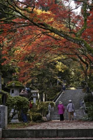 秋の大雄山最乗寺