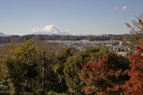 大磯城山公園から望む富士山