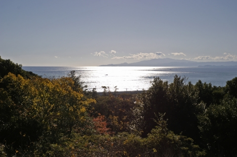 大磯城山公園から望む冬の相模湾