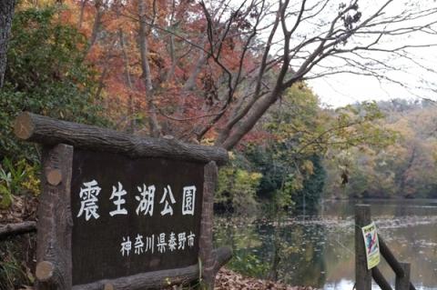 秦野震生湖の表示板