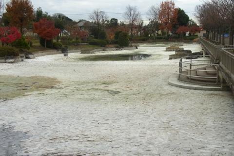 水が抜かれた上府中公園の池