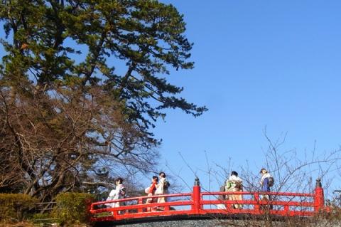 成人の日の小田原城常磐木橋