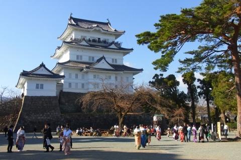 成人の日の小田原城