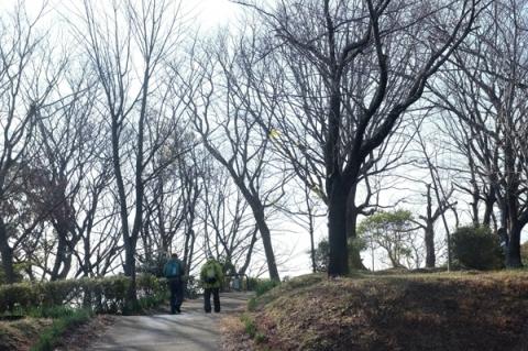 吾妻山公園中里口からの登山道