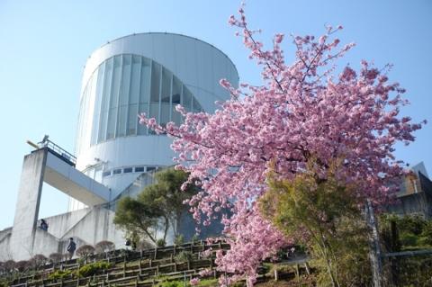 河津桜を前景に見上げた松田山ハーブ館