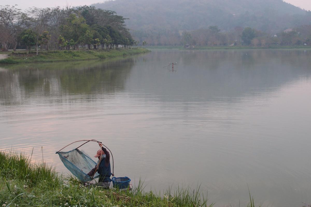 チェンライの湖畔でエビを獲る人