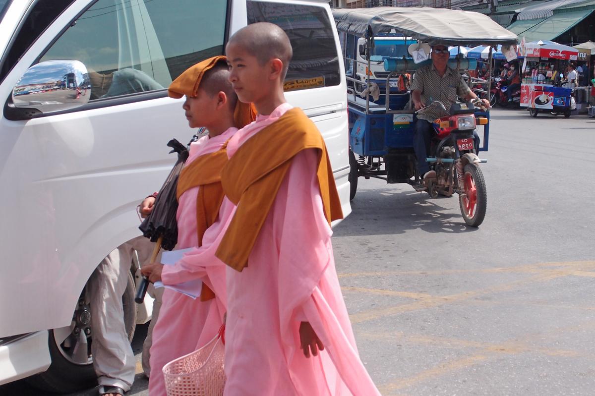 ピンクの僧衣を纏ったミャンマーの尼僧ティラシン