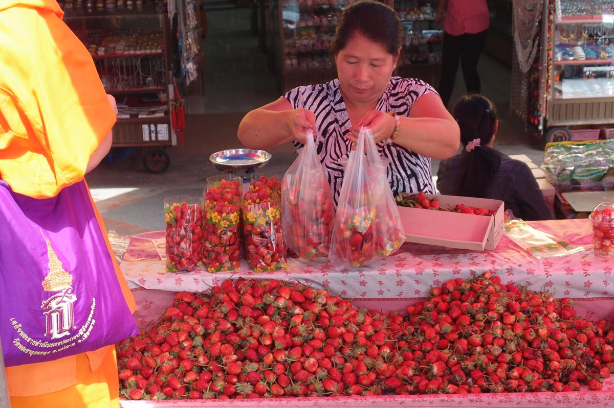 タイ国メーサーイの特産品イチゴ