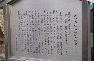 浅沢神社05