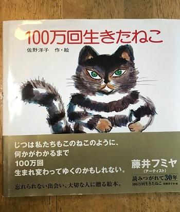 100のネコ
