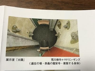 IMG_1884-s.jpg