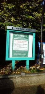 東京文化会館3