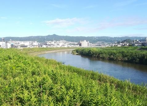 9 大和川河川敷から信貴山