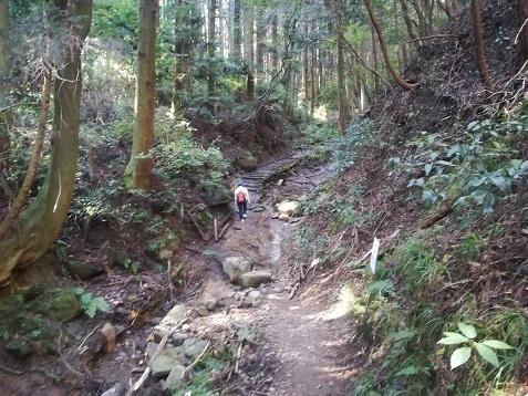 5 祐泉寺を過ぎて登山道は急になる