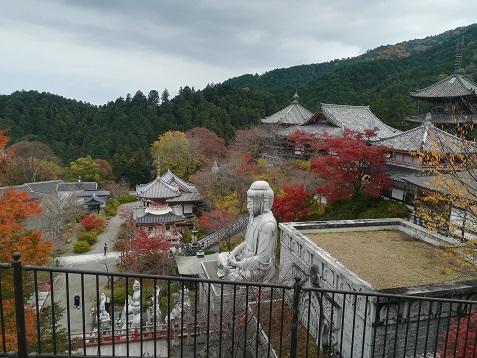 6 ハイキングコースから壷阪寺境内を眺める