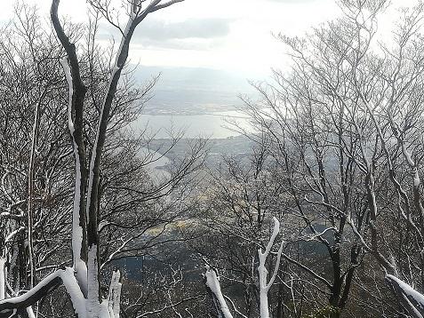 10s 樹木の間から琵琶湖が見える