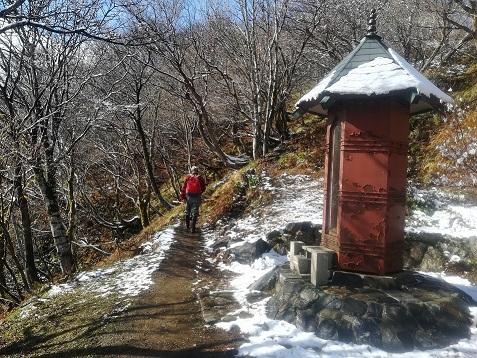 11s 登山道