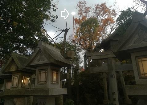 19 信貴山空鉢護法頂上のLEDライト