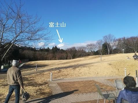 5 足柄SAは富士山が遠くに上部しか見えない