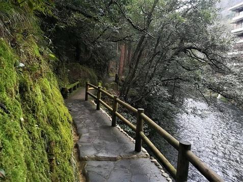 6 鶴仙渓遊歩道