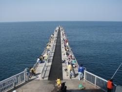 10月16日 桟橋 2