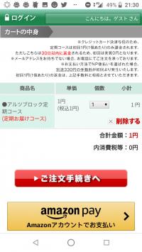 アルツブロックの注文画面