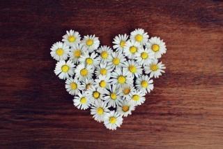 ハート型に花を集めたアート