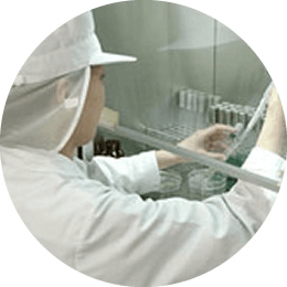 AFCの葉酸サプリmiteteの原料の検査風景