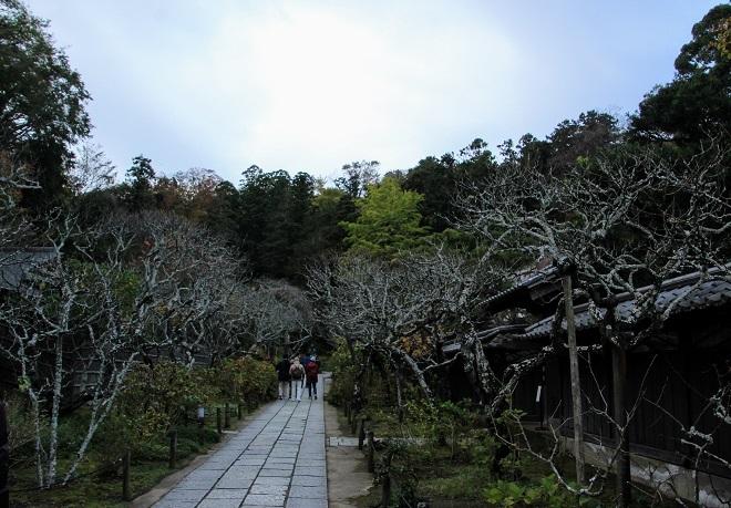 2019 北鎌倉