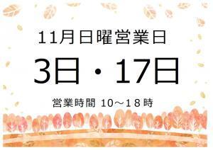 11月日曜営業_convert_20191103123813