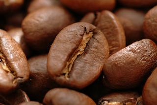 caffein[1]