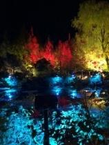 モネの庭光フェスタ