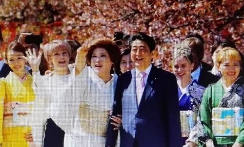 見る会IMG_20191116_101839桜を
